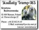 Krystyna Rostworowska