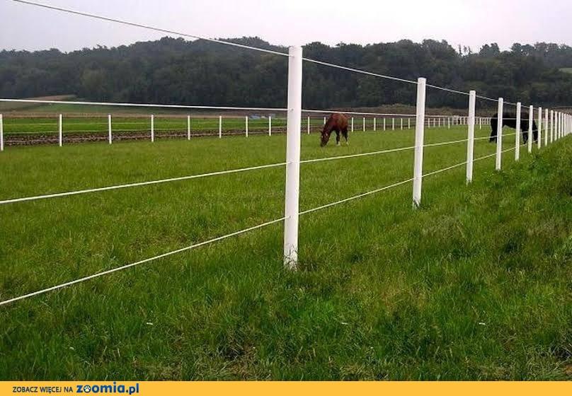 Equisafe - ogrodzenia elektryczne dla koni, pastuch