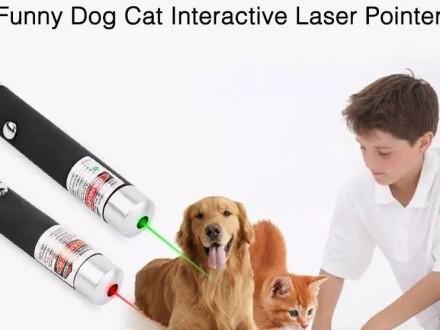 Gratis • Super Laser dla Kota ( *czytaj opis ) Sfinks - Sphynx