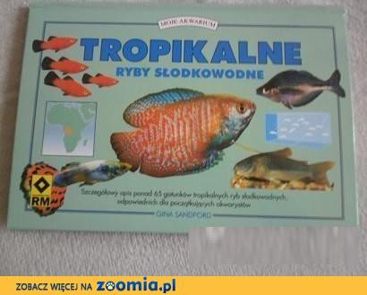 Tropikalne ryby słodkowodne