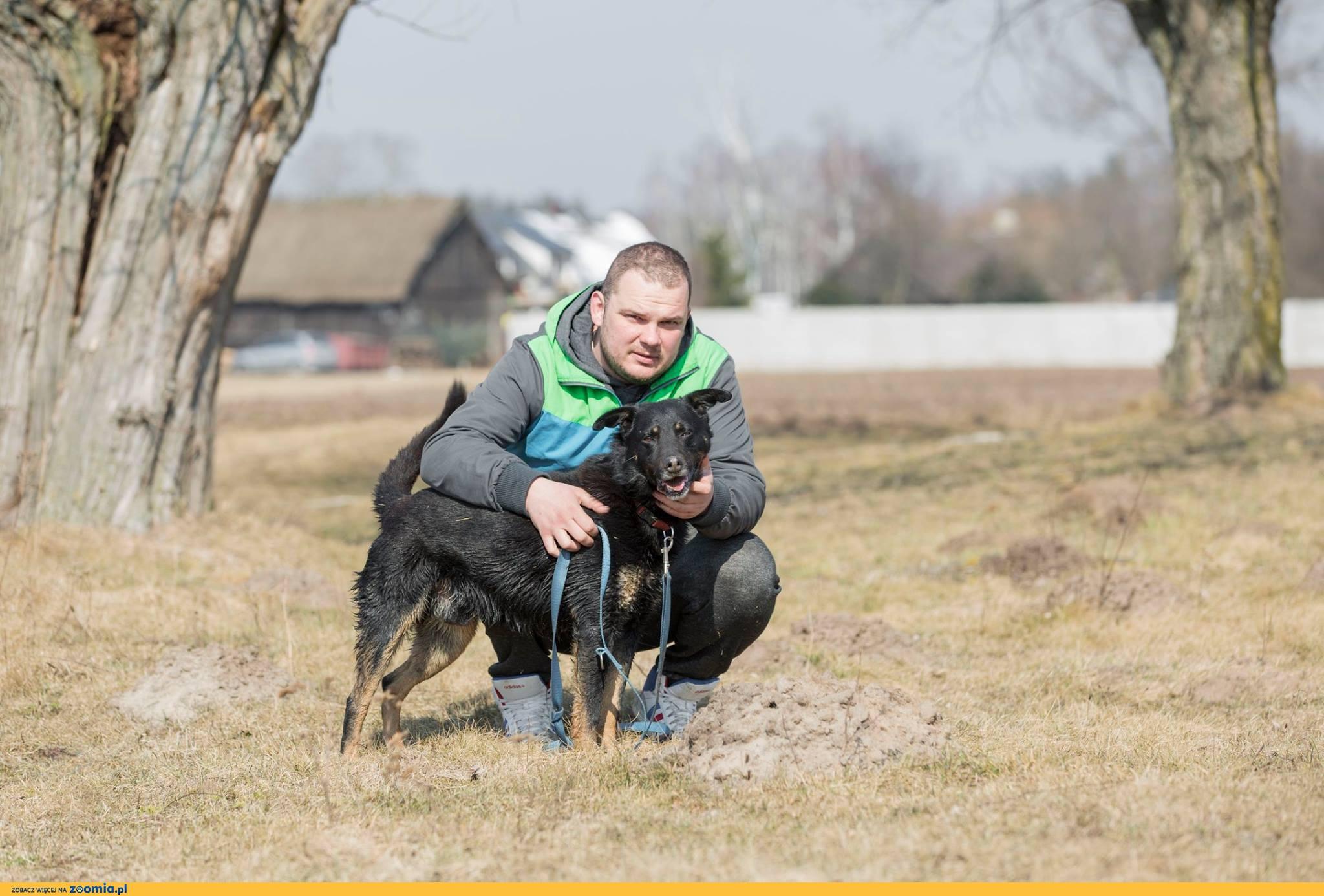 Tomaszek, towarzyski, wesoły psiak szuka aktywnego domu!