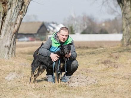 Tomaszek  towarzyski  wesoły psiak szuka aktywnego domu!