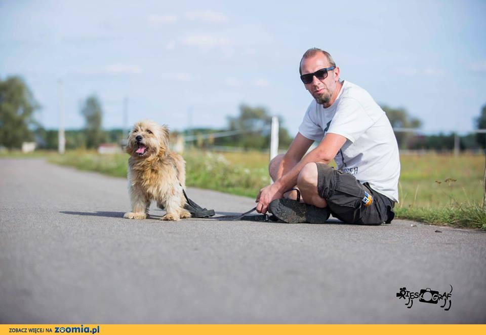 Malutki Puszek, niekonfliktowy KANAPOWY psiak szuka domu!