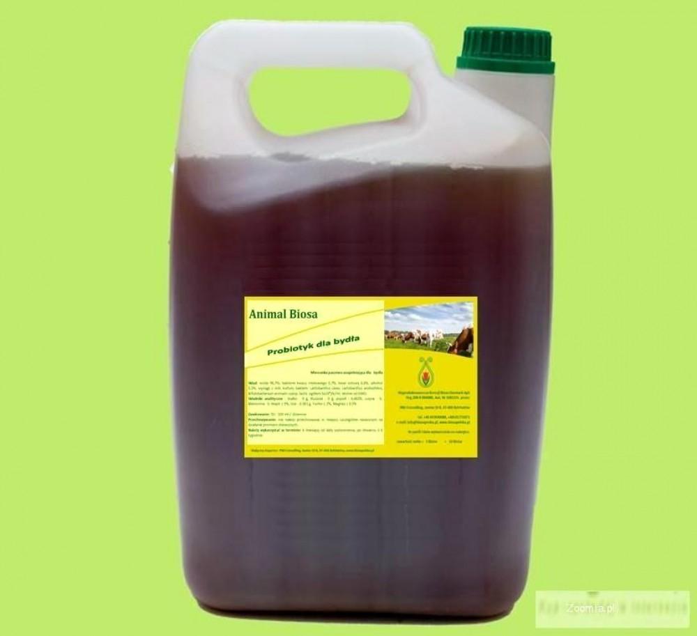Probiotyk dla bydła - Animal Biosa