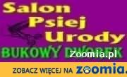 Strzyżenie psów Białołęka Warszawa Tarchomin