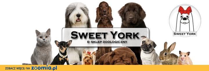 SWEET YORK.PL e-sklep zoologiczny- ZAPRASZAMY