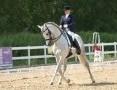 Współdzierżawa dobrze ujeżdżonego konia