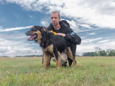 Treks  wesoły  aktywny psiak szuka super domu!