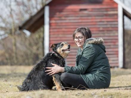 Kudłaty  zakochany w człowieku  pokochaj wspaniałego psa!