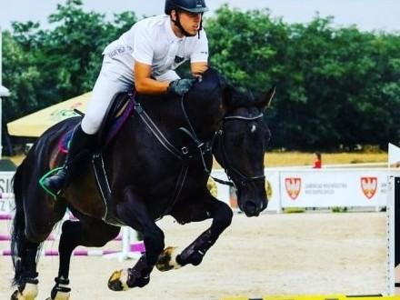 Kupie konia który wprowadzi mnie w sport!