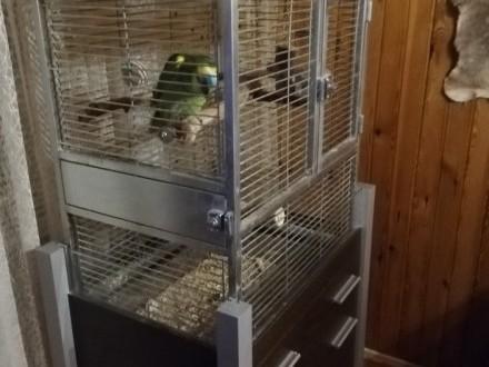 Klatka dla dużych papug