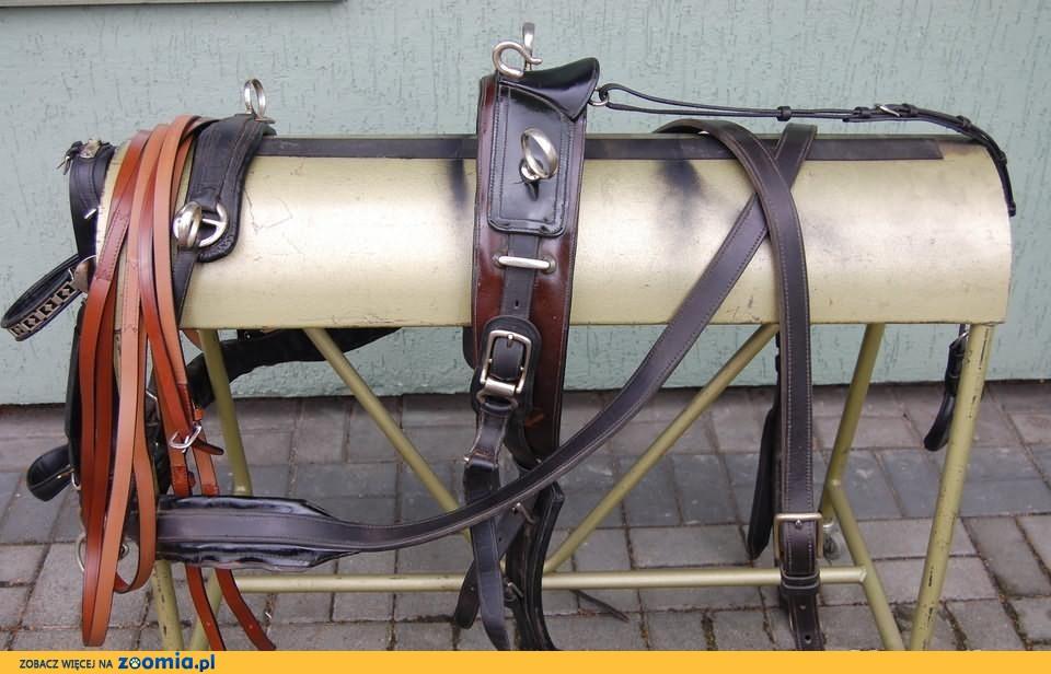 sprzedam szor pojedynkowy konie 140cm-155cm