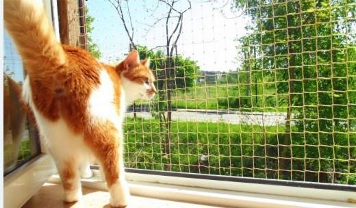 Pozwól aby Twój KOT czuł się bezpiecznie Osiatkowania balkonów i okien- Śląsk   śląskie Sosnowiec
