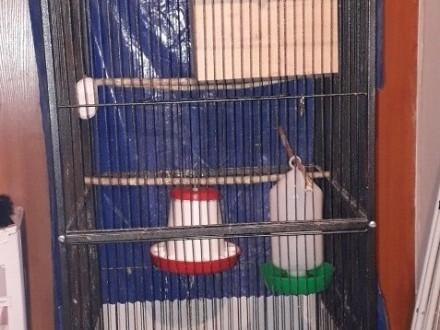 Duża klatka dla ptaków