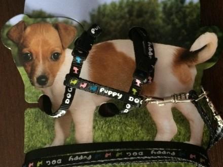 Smycz dla psa z szelkami PUPPY DOG czarne TRIXIE