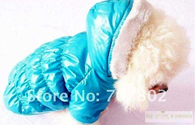 ubranko dla psa ubranie ratlerek rozmiar S