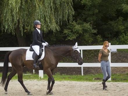 Treningi dla osób nie posiadających konia!
