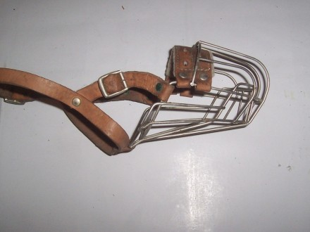 Metalowy kaganiec dla młodego owczarka
