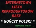 GOŃCZY POLSKI reproduktory - lista, wpisy