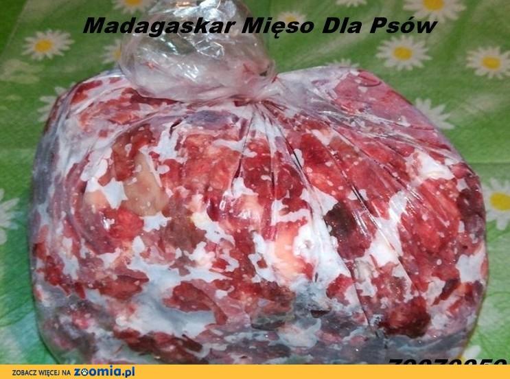 Mięso karma mrożona dla psów psa kota wołowina serca wołowe bez konserwantów