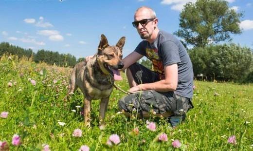 Łagodny  dzieciolubny Szarik szuka kochającego domu!   Kundelki cała Polska