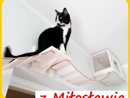 MOSTEK półka kładka hamak schodki na ścianę dla kota półki z MIŁOSŁAWIA