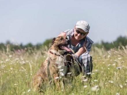 Pogodny  niezwykle przyjazny Teri  cudny psiak do adopcji!