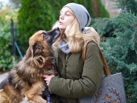 HUGO pokaże Ci prawdziwą psią miłość
