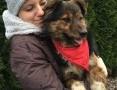 Oskar, pełen pozytywnej energii, super psiak szuka domu!