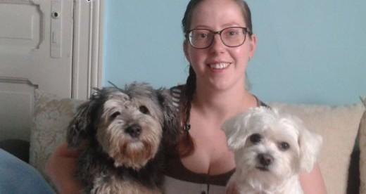 strzyżenie psów  psi fryzjer groomer   warmińsko-mazurskie Działdowo