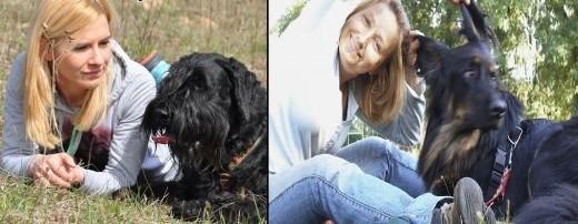 Szkolenie psów rodzinnych   małopolskie Myślenice