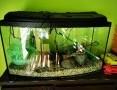 'Zestaw akwarium 112L + filtr JBL + system Co2+ lampa UV+ szafka