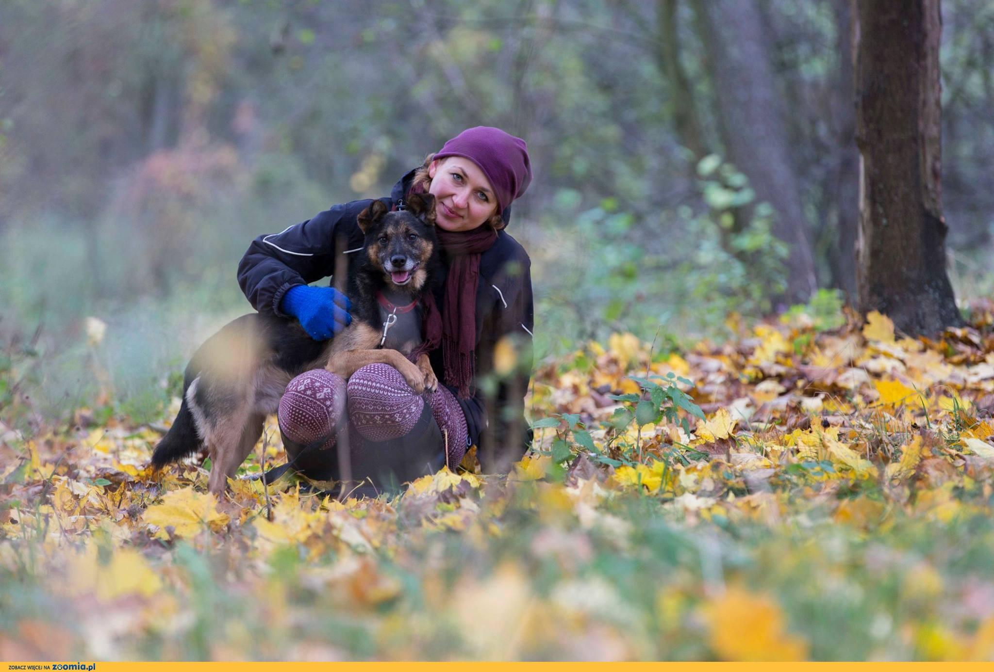 Esek, spełnienie Twoich marzeń o psim przyjacielu!