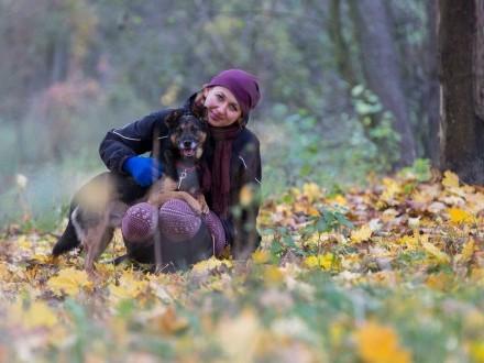 Esek  spełnienie Twoich marzeń o psim przyjacielu!
