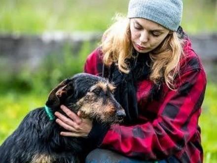 Poznaj tego super psa  co na imię Dżager ma