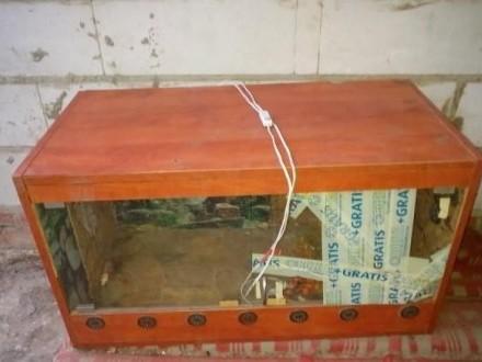terrarium  z wyposażeniem