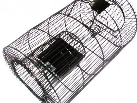 Pułapka żywołapka szczury myszy + przynęta