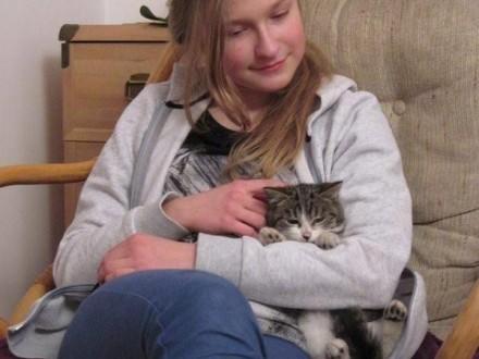 Młoda koteczka  czysta  grzeczna do pokochania!
