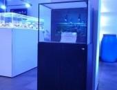 Zestaw dla początkujących - akwarium morskie 150L