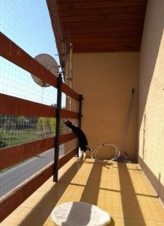 Siatka na balkon  okna  tarasy dla kota Zielona Góra