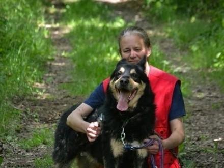 Guzik - duży pies, tylko dla doświadczonego człowieka!