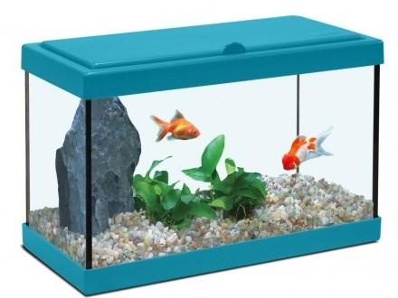 Żwir rzeczny podłoże do akwarium od 2-8 mm - KAŻDY BIOTOP