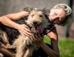 SZCZEPAN - mały psiak - do adopcji,  śląskie Katowice