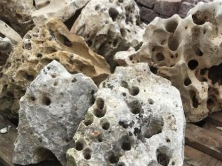 Kamienie Akwariowe WAPIEŃ Filipiński Łupek Filitowy Drzewiasty Lawa IMPERIUM KAMIENIA WARSZAWA