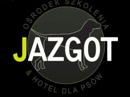 Hotel dla psów JAZGOT   podkarpackie Sanok