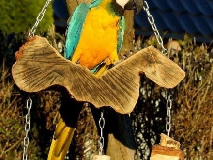 Huśtawki masywne grube solidne dla duzych papug