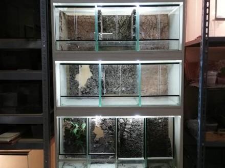 Regał terraria terrarium ptaszniki oświetlenie
