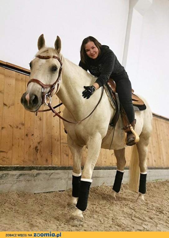 Nauka jazdy konnej, treningi na prywatnym koniu, lonże dosiadowe