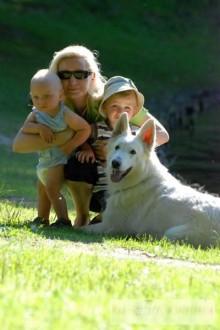 Owczarek szwajcarski biały