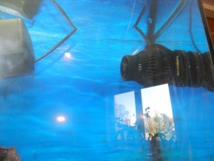 Akwarium morskie profilowane z pokrywą 112l !!! Okazja !!!